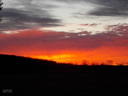 Dawn 4cr